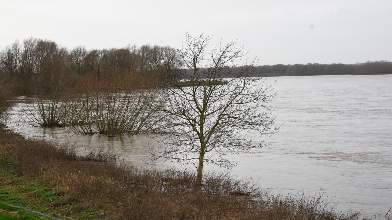 Rijkswaterstaat: code geel vanwege hoog water