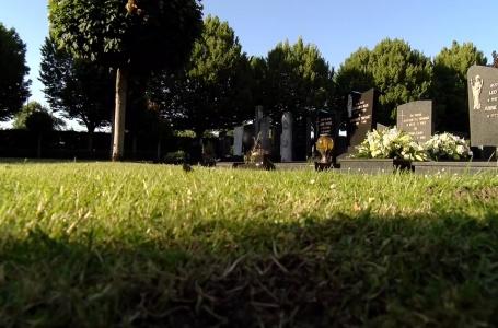 Hoe liggen andere begraafplaatsen erbij?