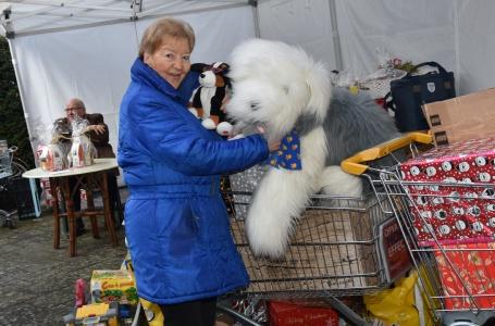 Ruggesteun vrijwilligers geschrokken na overlijden Ludy Nijsten