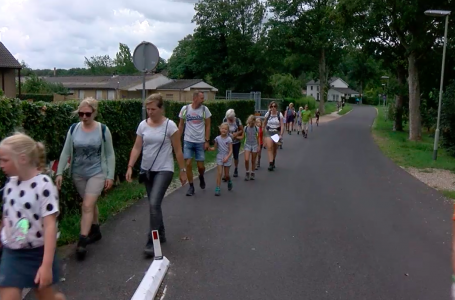 Heuvelland4daagse trok ook dit jaar door Zuid-Limburg