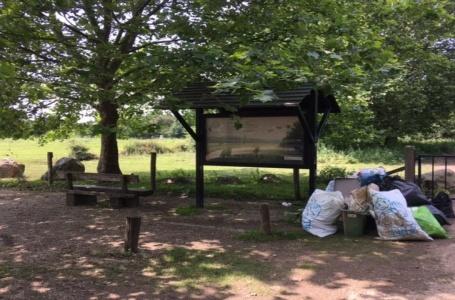 Het Limburgs Landschap zoekt helpende handjes voor opruimen natuurgebieden