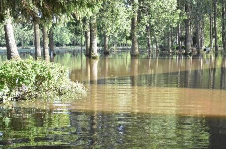 Waterschade in de tientallen miljoenen