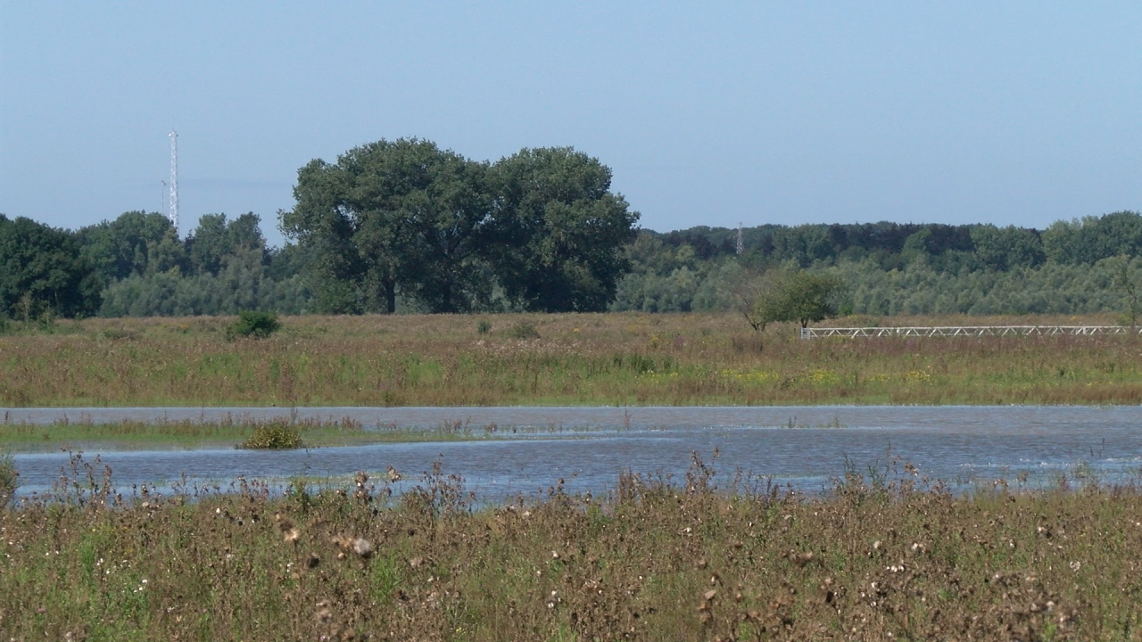 Herstelwerkzaamheden hoogwater langs oevers Maas
